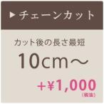 シャンデリア チェーンカット  最短10cm 加工 チェーン加工 短く調整