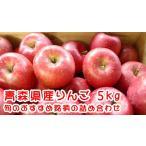 ◆青森県産りんご おすすめ詰め合わせ(5kg)