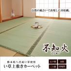 日本製 い草上敷 不知火(しらぬい) 江戸間2畳(176×176cm) - カーペット