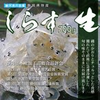 静岡県駿河湾産 生しらす 700g ( 生シラス しらす シラス )