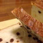 しんさんのパン屋 無添加 レーズン 食パン ノーカット (2斤分) | 天然酵母パン