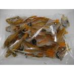 煮干 のどグロ(アカムツ) 激レア品【数量限定品】島根県産  120g