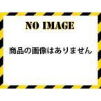 KINBOSHI/キンボシ  【納期10月中旬以降】GSB-2000N 手動芝刈機 ナイスバーディーモア