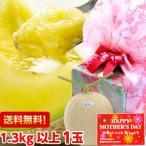 静岡産クラウンメロン1.3kg以上1玉