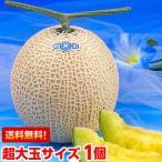 お中元 ギフト 静岡温室メロン 超大玉1.7kg×1個