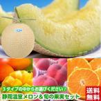 静岡温室メロン&旬の果実セット