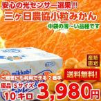 三ケ日みかん(早生) 優品Sサイズ 10kg
