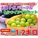 ナガノパープル&シャインマスカット 秀品1.2Kg(2房入り)