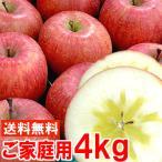 長野産樹成り完熟サンふじりんご5kg