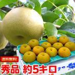 幸水梨 秀品 約5kg