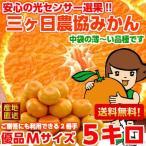 三ケ日みかん(早生) 優品Mサイズ 5kg