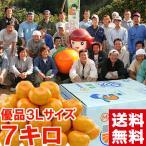 三ヶ日みかん(青島) 優品3Lサイズ8kg