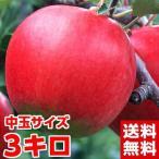 高糖度サンふじりんご 中玉 約3kg
