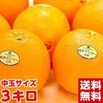 カリフォルニア産ネーブルオレンジ3kg