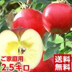 青森産樹成り完熟サンふじりんご2.5kg