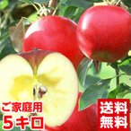 青森産樹成り完熟サンふじりんご4.5kg