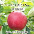 葉とらず シナノスイート 5kg 青森県南部産 (減農薬:期中2回、化学肥料:不使用、樹上完熟りんご) 10月下旬〜12月中旬 送料無料