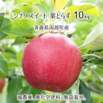 葉とらず シナノスイート 10kg 青森県南部産 (減農薬:期中2回、化学肥料:不使用、樹上完熟りんご) 10月下旬〜12月中旬 送料無料