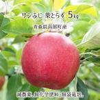 葉とらず サンふじ 5kg 青森県南部産 (減農薬:期中2回、化学肥料:不使用、樹上完熟りんご) 11月中旬〜3月下旬 送料無料