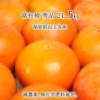 富有柿 秀品 2L 5kg 農薬8割以上減 無化学肥料 福岡県田主丸町産 17〜19玉 11月上旬〜12月中旬 送料無料