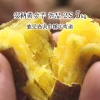 安納黄金芋 秀品 2S 5kg 種子島 鹿児島県中種子町産 1ヶ月以上貯蔵熟成 安納芋 蜜芋 11月上旬〜3月下旬 送料無料