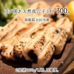 活〆・開き 天然真穴子 (生・冷蔵) 中サイズ 300g (2尾) 島根県山陰沖産 送料無料