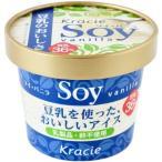 アレルギー対応食品 豆乳アイスsoy バニラ 110ml【冷凍】