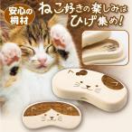 メモリーケース SD microSD 薄型 持ち運び 保管用 自宅用 自宅 小物 小物入れ 整理 薬ケース USBケース スマホグッズ  猫のヒゲ入れ メモリーケース gl-165
