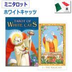 可愛い猫のミニタロットカード