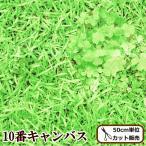 KOKKA キャンバス 生地 芝生でゴロン neonジェーン