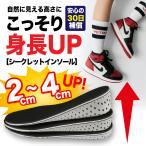 シークレットインソール インソール 中敷き 脚長 美脚 身長UP レディース メンズ 防臭 抗菌 低反発 EVA素材