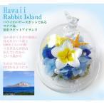 プリザーブドフラワー ドーム プルメリア うさぎ 誕生日 プレゼント 結婚祝い ハワイ ラビットアイランド