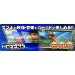 HDMI接続アダプター HDA433-A iOS用 (Apple Lightningコネクタ搭載端末) データシステム