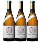 ワイン 白ワインセット 希少な100年古樹の高級品種モスカテル チャン・デ・ロサス・マスカット・オブ・アレキサンドリア 3本セット 送料無料 白ワイン