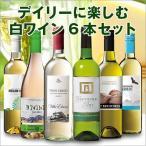 ワイン 第40弾 デイリーに楽しむ白ワイン6本セット
