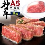 ステーキ肉 A5ランク 神戸牛 サーロイン ブロック 1Kg 国産黒毛和牛 ブランド牛 牛肉 お歳暮 ギフト 贈答 お取り寄せ グルメ
