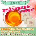 「着日指定非対応」「メール便ポスト投函」「紅茶」愛知県産みかんとアプリコットのフレーバーティー1杯&ブラックティー2杯 ティーバッグ「UE」