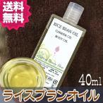 送料無料 ライスブランオイル 40ml 無添加│米油 米ぬかオイル ライスオイル キャリアオイル 化粧品原料