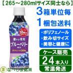 ◆伊藤園 太陽のスーパーフルーツ ブルーベリー&アサイーMix 265g PET×24本◆ 【ケース販売】【送料別途】