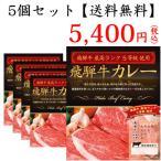 【送料無料】 ◆飛騨牛最高ランク5等級使用飛騨牛カレー 200g×5個◆