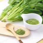 ダイエット、栄養補給に「野菜粉末 ほうれん草ファインパウダー 10g入り」【無添加・無着色】