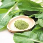ダイエット、栄養補給に「野菜粉末 ほうれん草ファインパウダー 100g入り」【無添加・無着色】