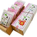 松山銘菓 道後夢菓子噺 (どうごむかしばなし) 白鷺3個・椿2個 半生菓子 詰合せ 5個/箱 ー 一六本舗