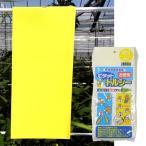 害虫捕獲粘着紙 ビタット トルシーM 黄 10×23cm 50枚/袋 − 一色本店
