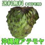 沖縄産アテモヤ 白箱入り2kg 送料無料