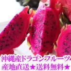 沖縄産ドラゴンフルーツ(レッドピタヤ)2.0kg前後(4〜8個)送料無料