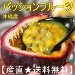 送料無料 沖縄産パッションフルーツ(紫)