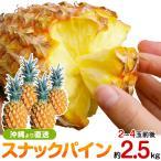 スナックパイン2.5kgサイズ(2〜4個) 送料無料 沖縄産パイナップル ギフト