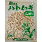 ハトムギ粒 300gx5袋 送料無料(非精製はと麦全粒 岡山県産 雑穀ご飯用)