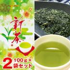 〔予約〕新茶 お茶 緑茶 日本茶 お手頃価格 2021 鹿児島新茶100g